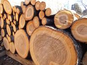 薪になる前の木材